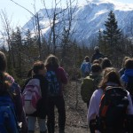 Students hike through rocks and small trees toward Grewingk Glacier.